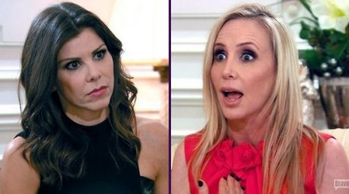 Heather Dubrow Admits She Owes Shannon Beador An Apology