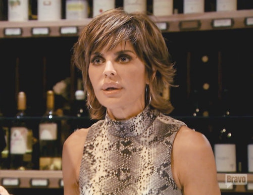 "Lisa Rinna Says ""Chronic Lyme Is Confusing For Most"