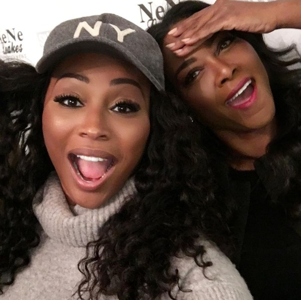 Cynthia-Bailey-Kenya-Moore-NeNe-Surprise-Party