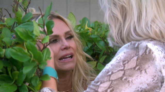 Tamra Heart of attention on exact Housewives Of Orange County