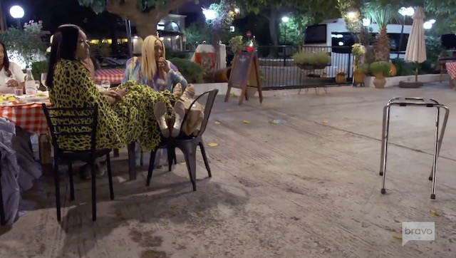 Real Housewives Of Atlanta Dinner In Greece Feral Cats